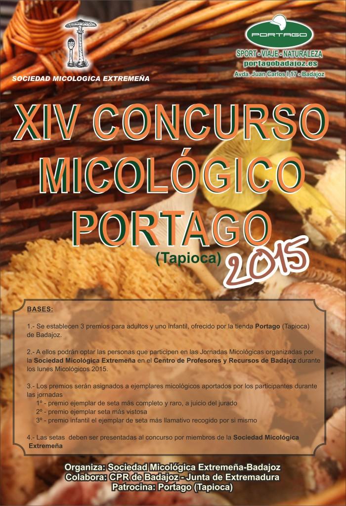 cartel setas2015-1